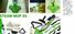مكنسة البخار الخضراء