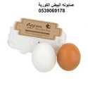 صابونه البيض الكورية لترطيب و تفتيح لون البشرة صباحا ومساءا والتخلص من الجلد الميت
